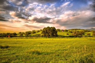 Free Green Countryside Picture for Android, iPhone and iPad