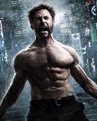 The Wolverine 2013 Picture for 768x1280