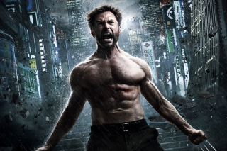 The Wolverine 2013 Wallpaper for HTC Desire HD