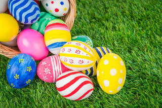 Easter Eggs and Nest Background for 220x176