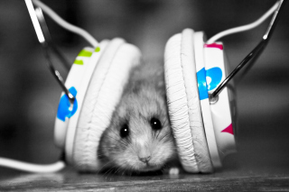 Free Dj Mouse Picture for Android, iPhone and iPad
