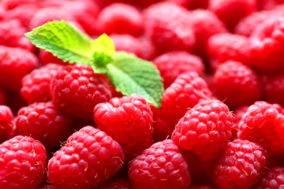 Raspberries Background for Android, iPhone and iPad