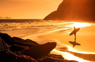 Surfing Summer Wallpaper for Android, iPhone and iPad