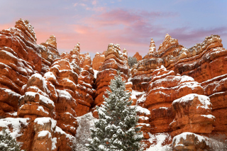 Snow in Red Canyon State Park, Utah sfondi gratuiti per cellulari Android, iPhone, iPad e desktop