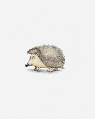 Hedgehog Illustration sfondi gratuiti per Nokia Lumia 800