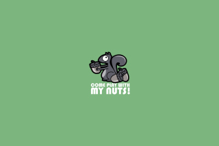 Nuts Picture for Android, iPhone and iPad