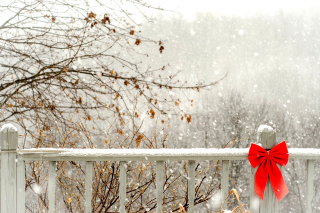 Winter Fence Background for Android, iPhone and iPad