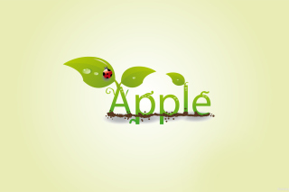 Summer Apple Picture for Android, iPhone and iPad