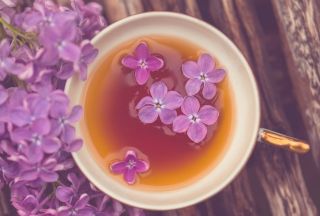 Free Lilac Tea Picture for Android, iPhone and iPad