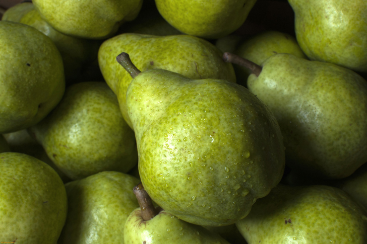 Fruit Pear wallpaper