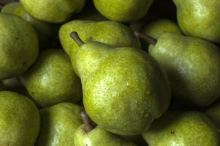 Fruit Pear - Fondos de pantalla gratis para LG Optimus One