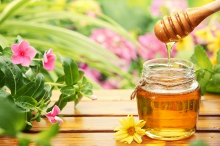 Honey Jar Background for 960x800