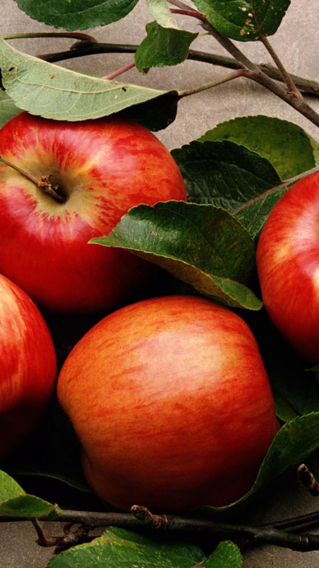 картинки телефона яблока самых смешных