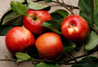 Red Apples - Fondos de pantalla gratis