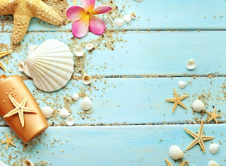 Seashells Background for Android, iPhone and iPad