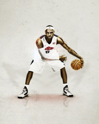 Free Nike USA Basketball Picture for 320x480