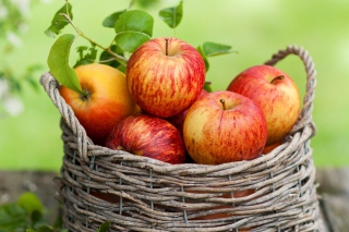 Apple Basket Wallpaper for Android, iPhone and iPad