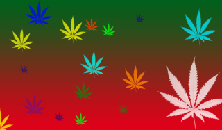 Weed Colours Wallpaper for Desktop 1280x720 HDTV