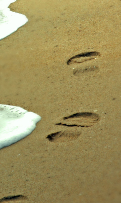 Screenshot №1 pro téma Footprints On Sand 240x400