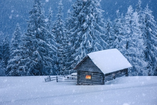 House in winter forest Picture for Android, iPhone and iPad