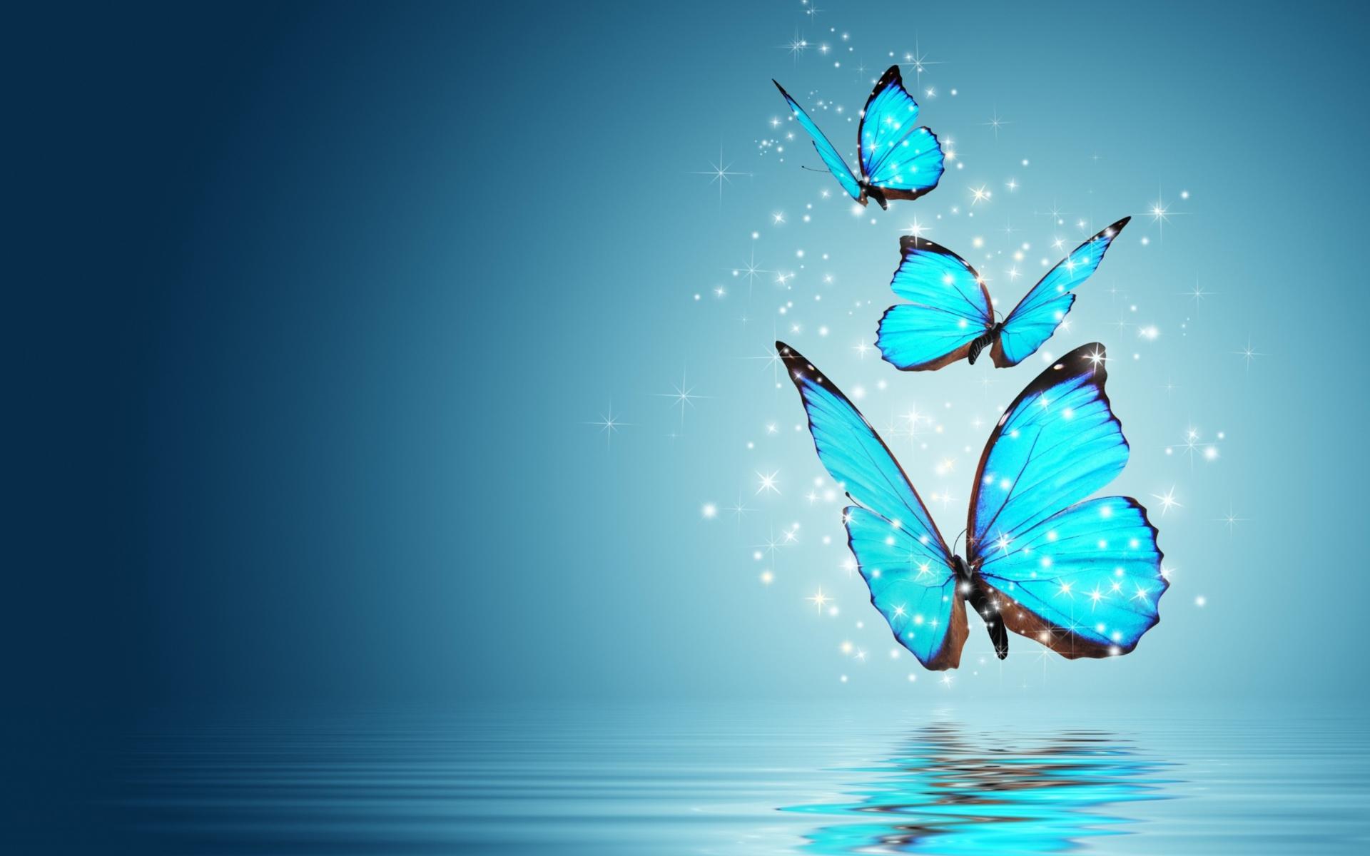 Blue Butterflies Wallpaper for 1920x1200