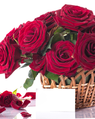 Roses Bouquet Wallpaper for Nokia Asha 305