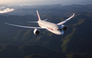 Qatar Airways - Boeing 787 - Fondos de pantalla gratis para LG Optimus One