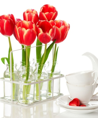 Картинка Tulips And Teapot на телефон iPhone 6 Plus