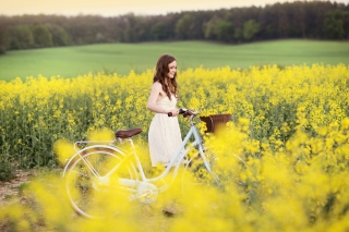 Girl With Bicycle In Yellow Field Picture for Android, iPhone and iPad