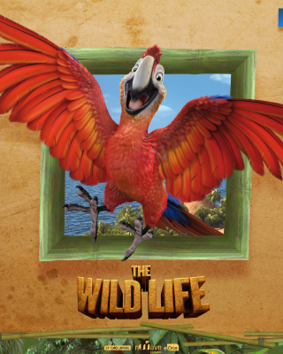 The Wild Life Cartoon Parrot papel de parede para celular para iPhone 4S