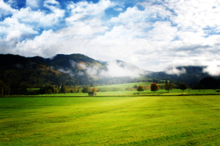 Free Autumn Fog In Slovakia Picture for Desktop Netbook 1024x600