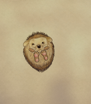 Cute Hedgehog Wallpaper for Nokia C1-01