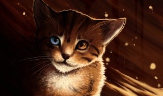 Drawn Cat Wallpaper for Android, iPhone and iPad