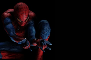 Spider-Man Picture for Android, iPhone and iPad