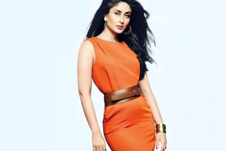 Kareena Kapoor 2013 New Wallpaper for Android, iPhone and iPad