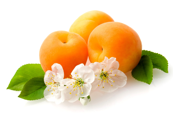 Apricot Fruit wallpaper
