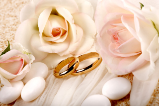 Картинка Roses and Wedding Rings для андроид
