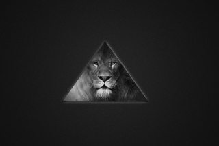 Lion's Black And White Triangle Background for Android, iPhone and iPad