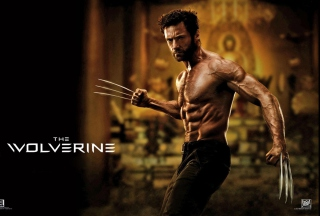 The Wolverine 2013 Movie sfondi gratuiti per Huawei IDEOS X6