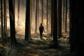 Free Girl In Forest Picture for Android, iPhone and iPad