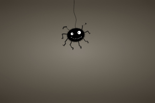 Funny Spider Wallpaper for Android, iPhone and iPad