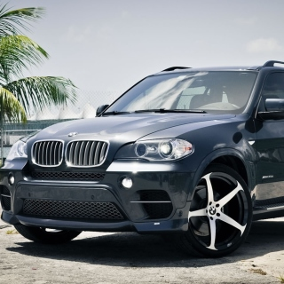 Free BMW X5 Picture for iPad