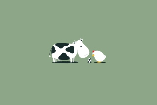 Funny Cow Egg Background for Android, iPhone and iPad