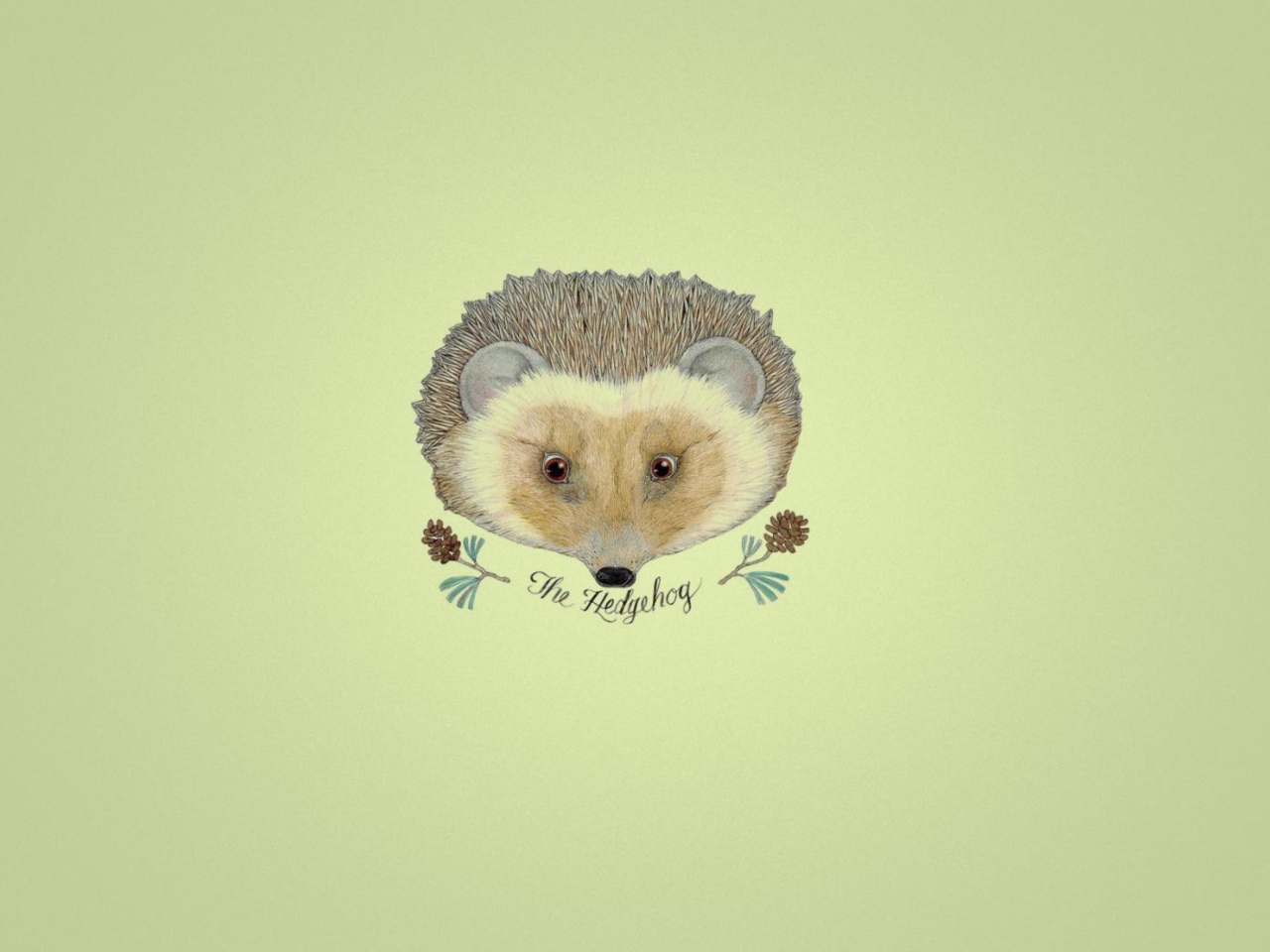 Hedgehog wallpaper 1280x960