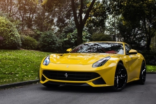 Free Ferrari F12 Berlinetta Picture for 1080x960