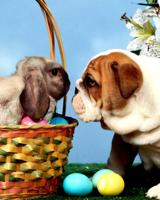 Easter Dog and Rabbit papel de parede para celular para iPhone 6