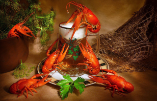 Beer And Crawfish Picture for Android, iPhone and iPad