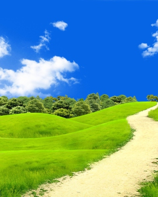 Green Hills In South America Wallpaper for Nokia Asha 311
