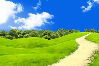Green Hills In South America Background for Fullscreen Desktop 1400x1050