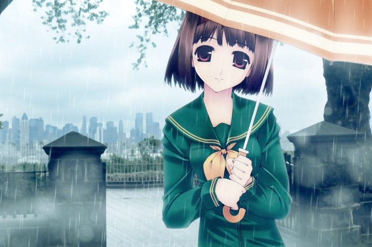 Fondo de pantalla Anime girl in rain